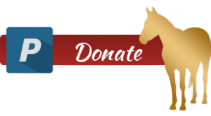 Donate with horse3